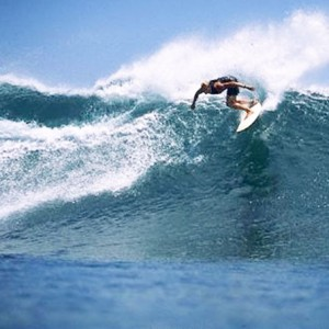 surfing3_ty-boni